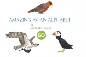 AMAZING AVIAN ALPHABET