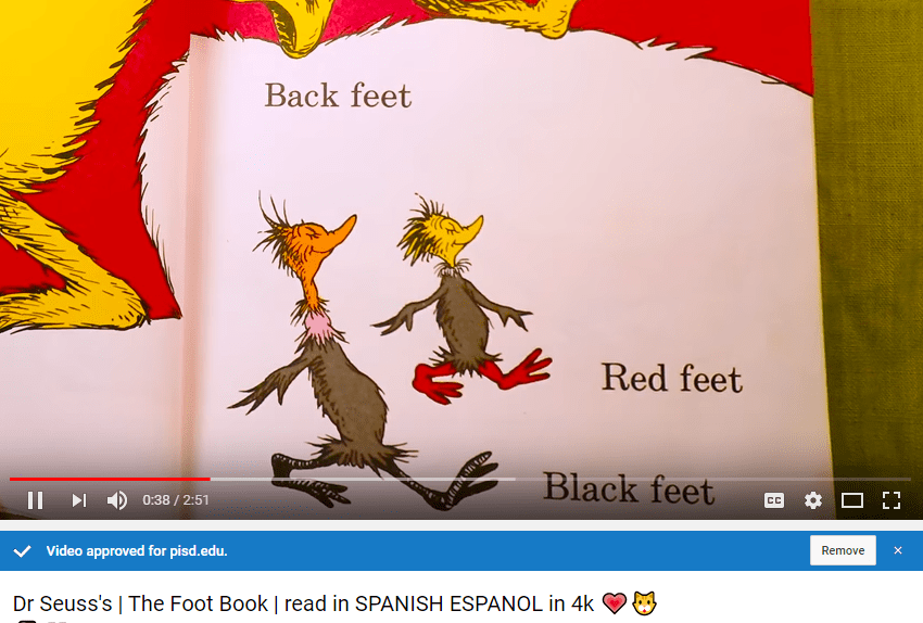 Spa Foot Book video