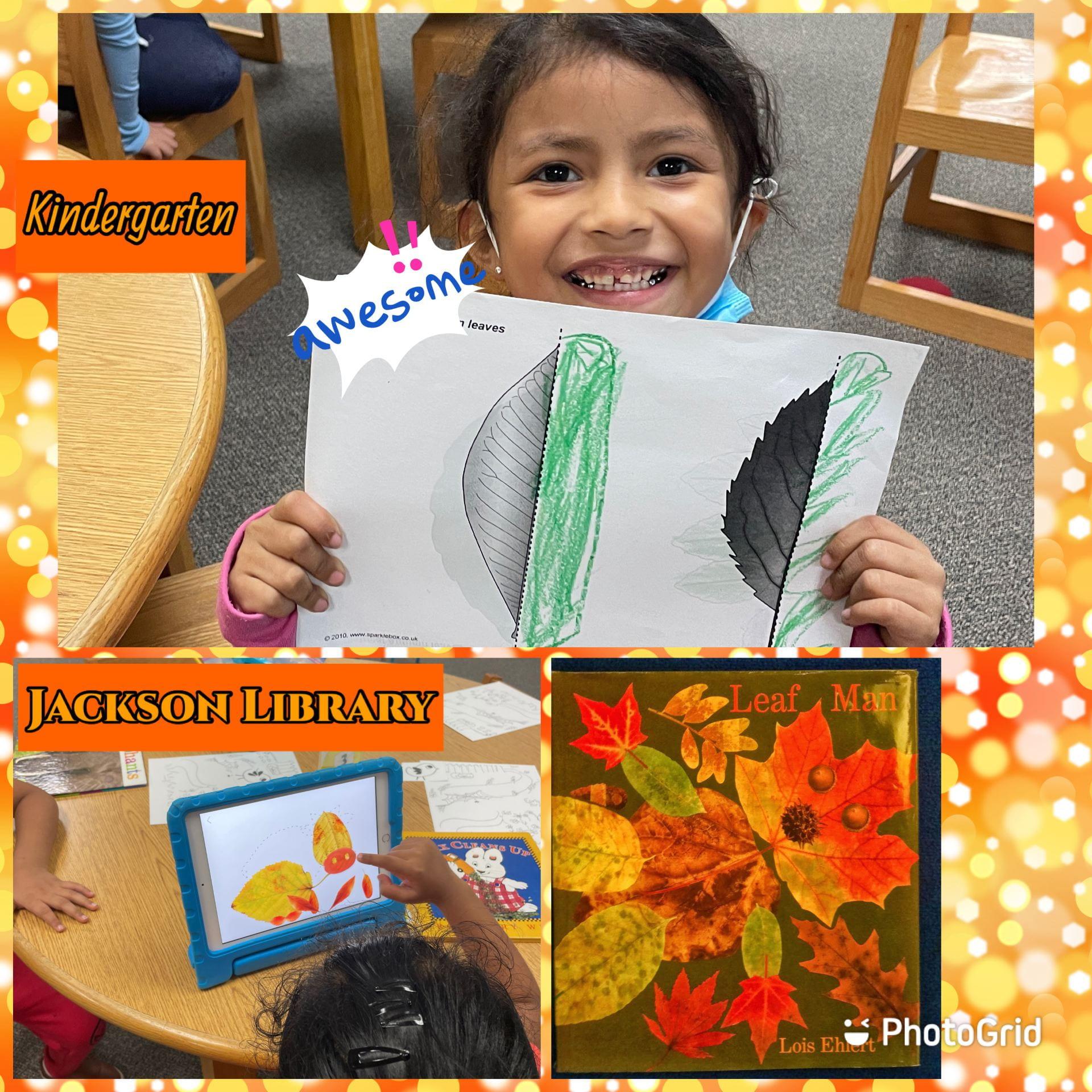 kindergarten leaf unit